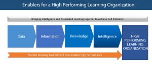 Learning and Capability