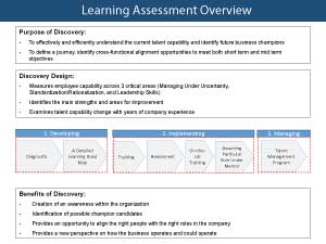 Learning Assessment